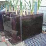Planta de Tratamiento Costa Rica130