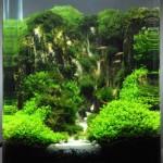Planta de Tratamiento Costa Rica184